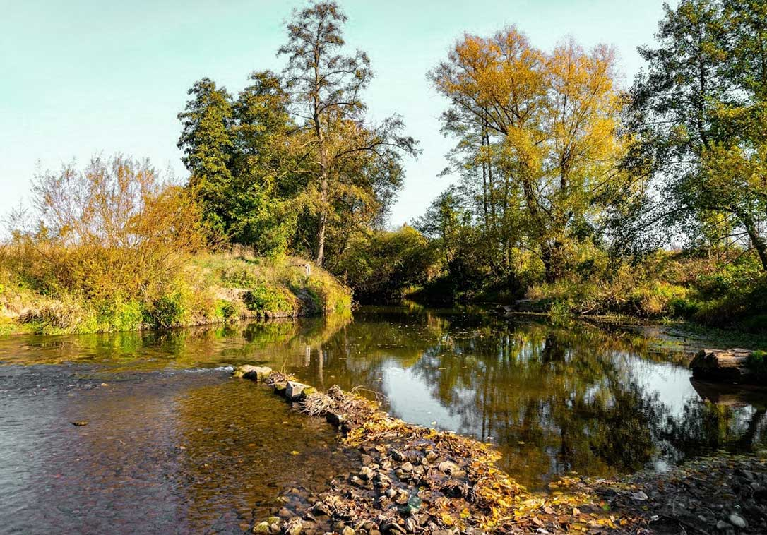 The mostly leisurely flowing Saale also offers beginners the opportunity for canoe tours.