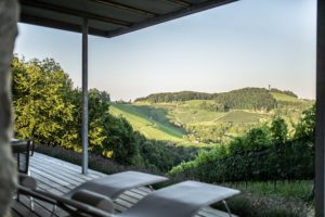 Fantastic view from the roof terrace of the Winzarei over the the Styrian hilly landscape.