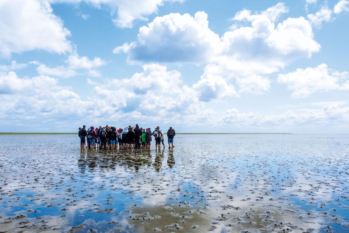 Einzigartiger Lebensraum - das Wattenmeer wurde 2009 zum Unesco-Weltnaturerbe erklärt.
