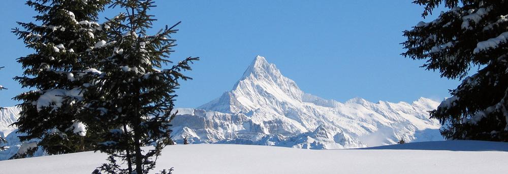 Großartige Ausblicke auf die Schweizer Bergwelt // Foto: Beatenberg Tourismus