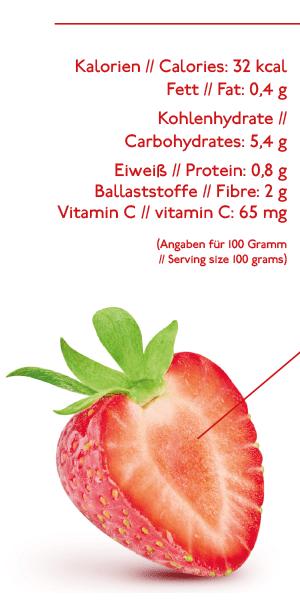 Alleskönner Erdbeere