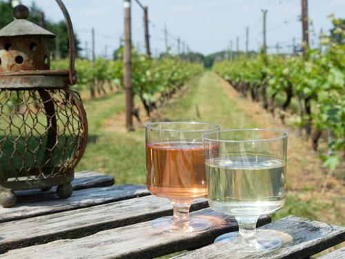 Wein aus Limburg