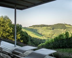 Traumhafter Blick von der Dachterrasse der Winzarei über die steirische Hügellandschaft.